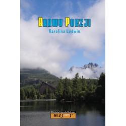 Ludwin Karolina - Barwy poezji